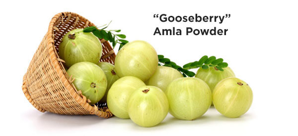 Amla Is a dominant source of Antioxidants and Vitamin C.
