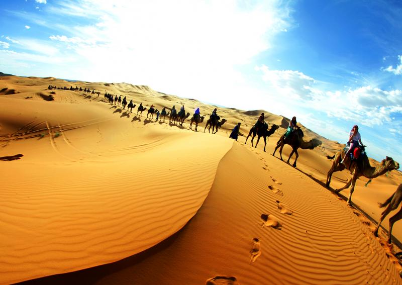 wildest places on earth