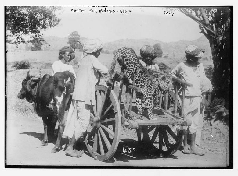 Top 21 India Vintage Photos India