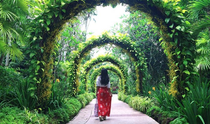 Best National Parks in Singapore