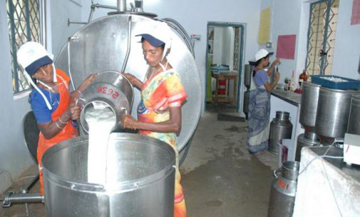 Amul Dairy Success in Hindi