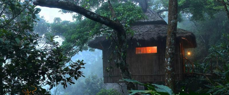 Best Tree House Resorts In India