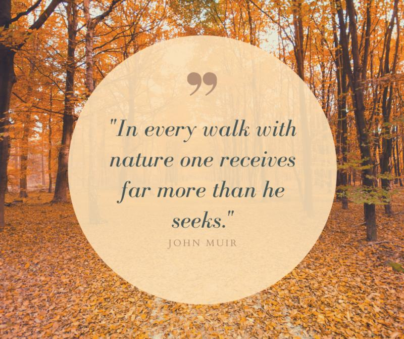 Most Popular Quotes on Nature
