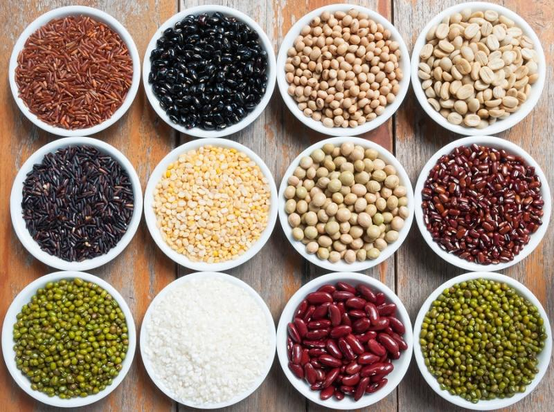 Pulses and Legumes - Easily available Protein rich diet