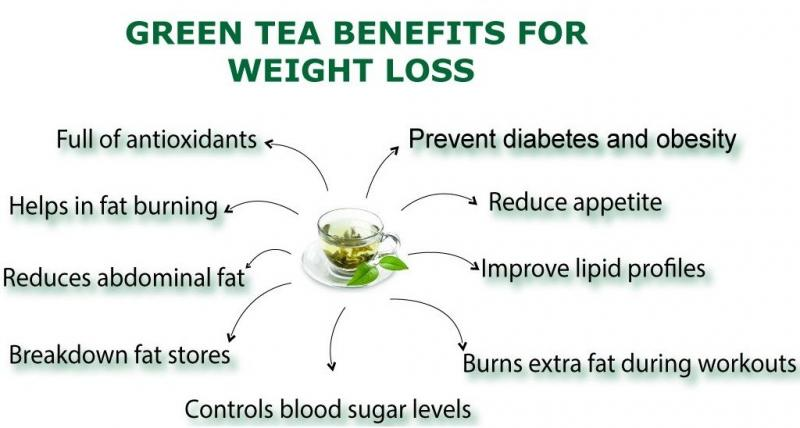Green Tea Benefits for Weight Loss