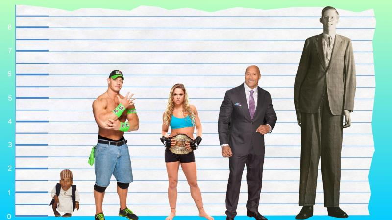 How tall is John Cena | Myfreedo